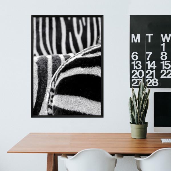 Kunstdruck Zebra