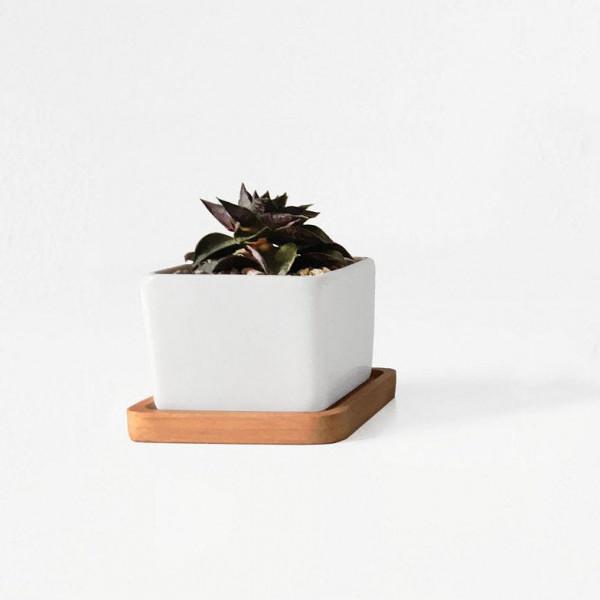 pflanztopf-bamboo-square