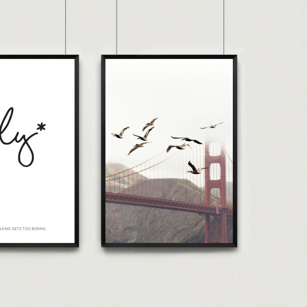 golden-gate-birds-set