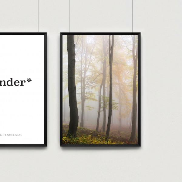Kunstdruck autumn forst